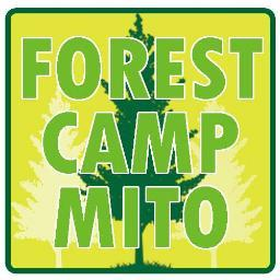 201609forestcamp