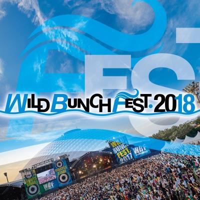 「WILD BUNCH FEST. 2018」第1弾ラインナップにサカナクション、マンウィズ、エレカシら32組