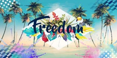 九州開催「FREEDOM aozora 2018」第1弾でMINMI、BES、Leyonaら出演発表